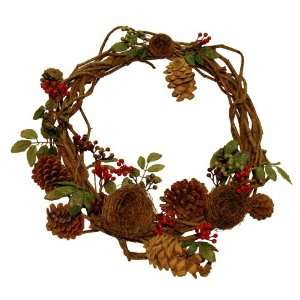 Red Berries, Pine Cones and Bird Nests