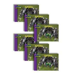 Creative Teaching Press CTP6718 Spiders 6 Pack I Used To