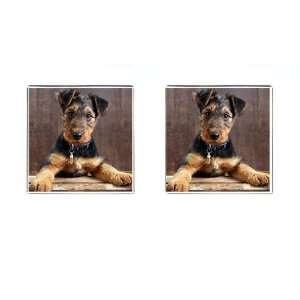 Airedale Terrier Puppy Dog Square Cufflinks F0003